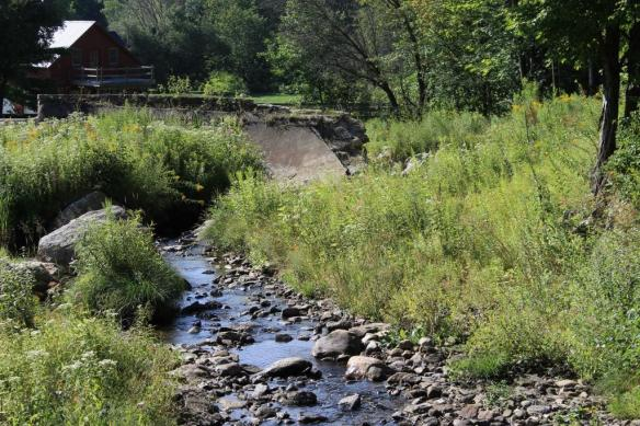 Lower Dam, Cold Spring Brook Park