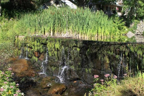 Upper Dam, Cold Spring Brook Park